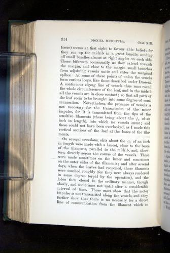 Image of Darwin-F1218-1875-00314