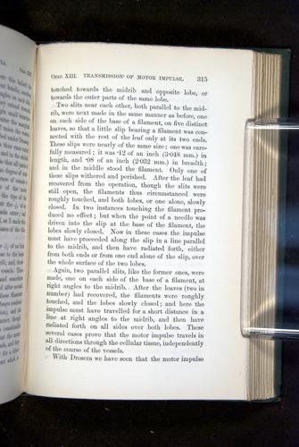 Image of Darwin-F1218-1875-00315