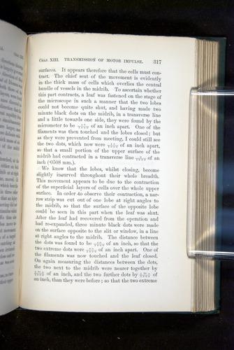 Image of Darwin-F1218-1875-00317