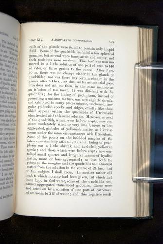 Image of Darwin-F1218-1875-00327