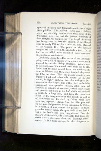 Image of Darwin-F1218-1875-00330