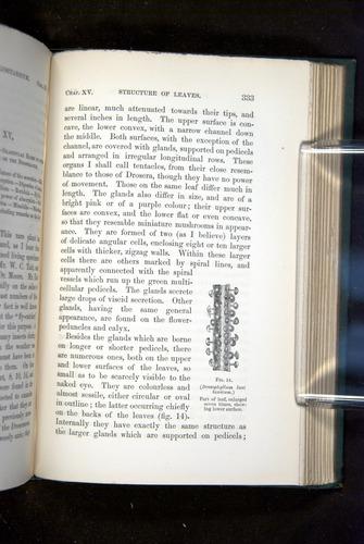 Image of Darwin-F1218-1875-00333