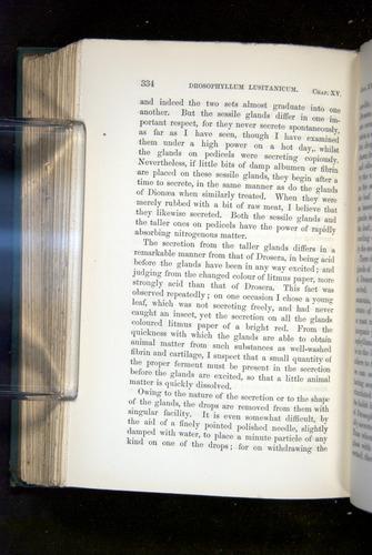 Image of Darwin-F1218-1875-00334