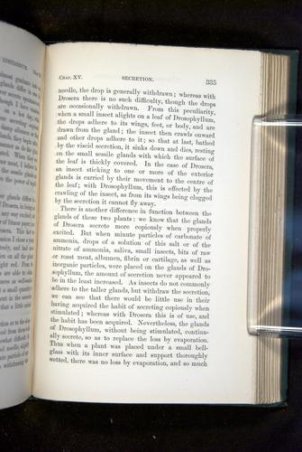 Image of Darwin-F1218-1875-00335