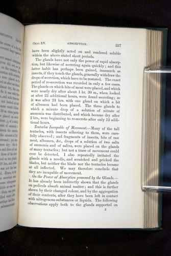 Image of Darwin-F1218-1875-00337