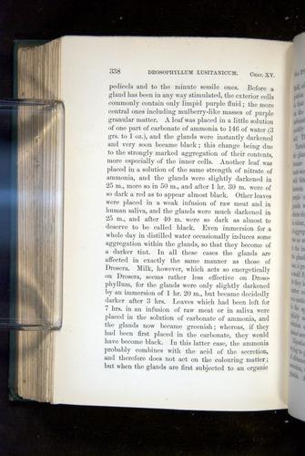 Image of Darwin-F1218-1875-00338