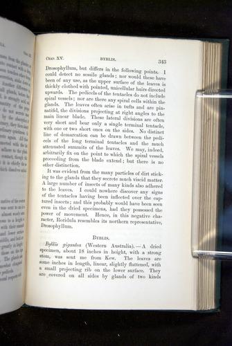 Image of Darwin-F1218-1875-00343