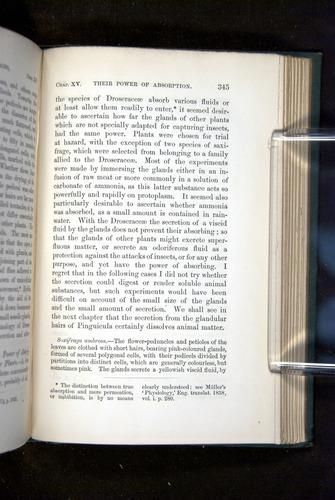 Image of Darwin-F1218-1875-00345