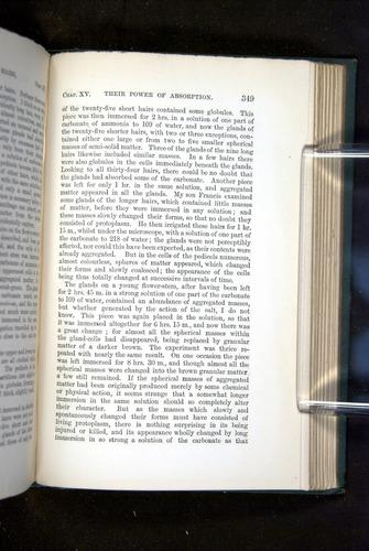 Image of Darwin-F1218-1875-00349