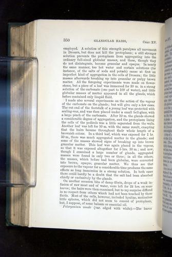 Image of Darwin-F1218-1875-00350