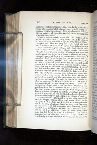 Image of Darwin-F1218-1875-00352