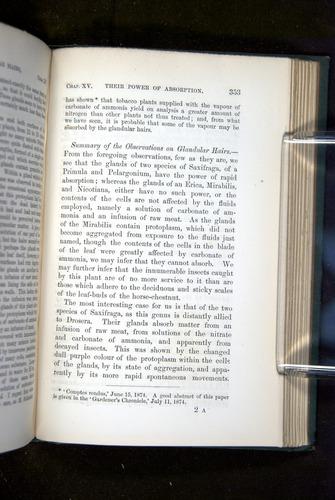 Image of Darwin-F1218-1875-00353