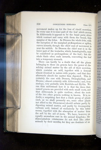 Image of Darwin-F1218-1875-00356