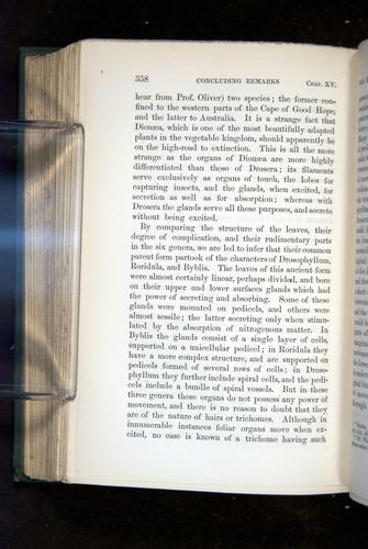 Image of Darwin-F1218-1875-00358