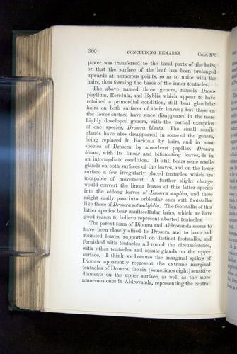 Image of Darwin-F1218-1875-00360