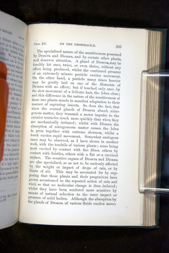 Image of Darwin-F1218-1875-00365