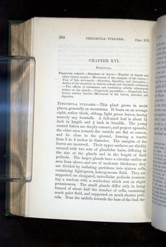 Image of Darwin-F1218-1875-00368