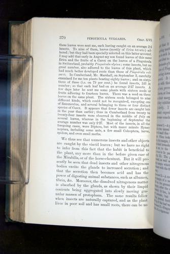 Image of Darwin-F1218-1875-00370