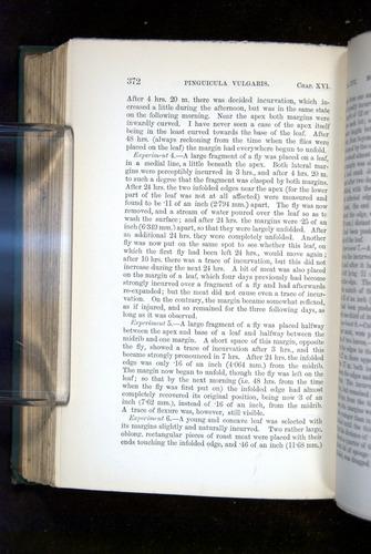 Image of Darwin-F1218-1875-00372