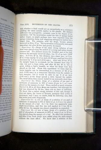 Image of Darwin-F1218-1875-00375