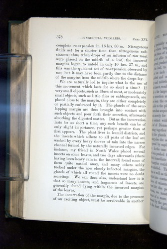 Image of Darwin-F1218-1875-00378