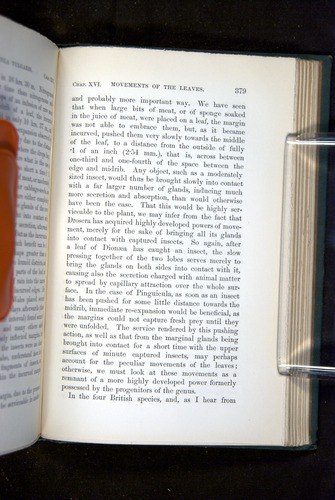 Image of Darwin-F1218-1875-00379