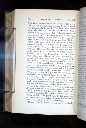 Image of Darwin-F1218-1875-00380