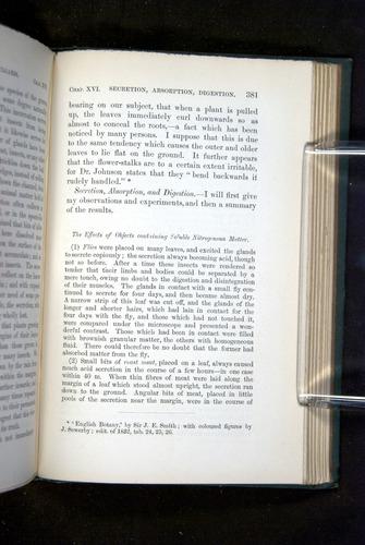 Image of Darwin-F1218-1875-00381