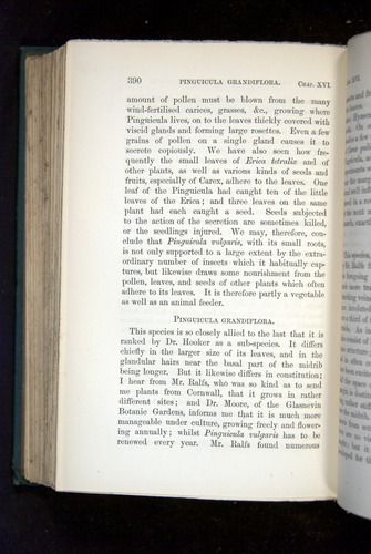Image of Darwin-F1218-1875-00390