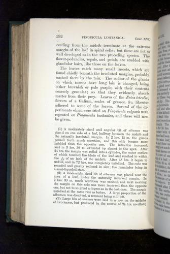 Image of Darwin-F1218-1875-00392