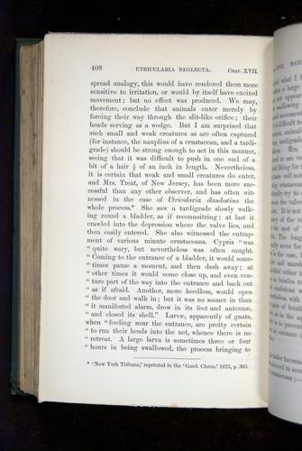 Image of Darwin-F1218-1875-00408
