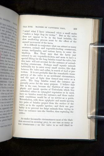 Image of Darwin-F1218-1875-00409
