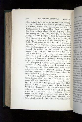 Image of Darwin-F1218-1875-00410
