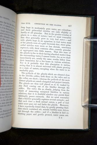 Image of Darwin-F1218-1875-00417