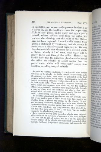 Image of Darwin-F1218-1875-00418