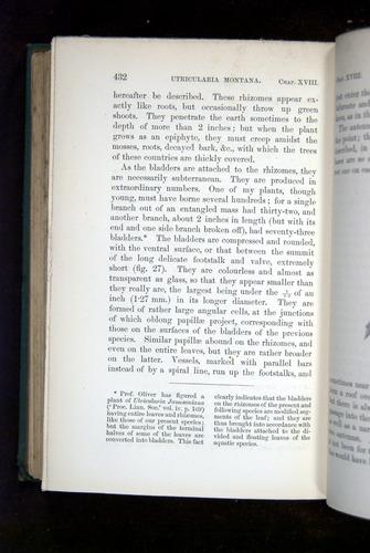 Image of Darwin-F1218-1875-00432