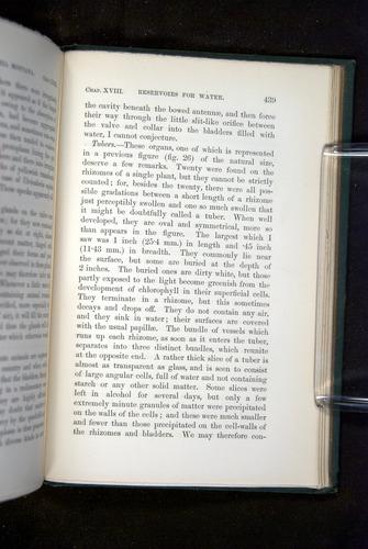 Image of Darwin-F1218-1875-00439
