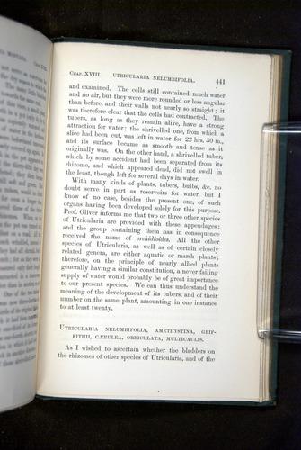 Image of Darwin-F1218-1875-00441