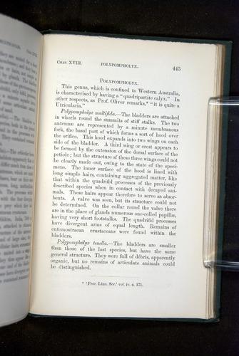 Image of Darwin-F1218-1875-00445