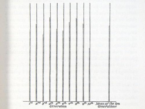 Image of Darwin-F1249-1876-det-053