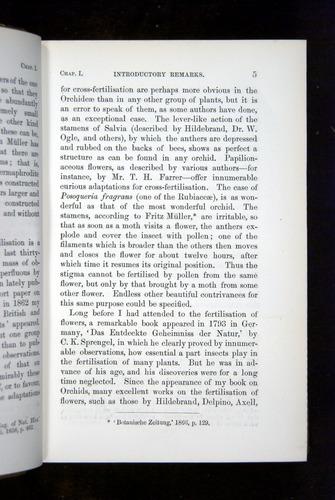 Image of Darwin-F1249-1876-005