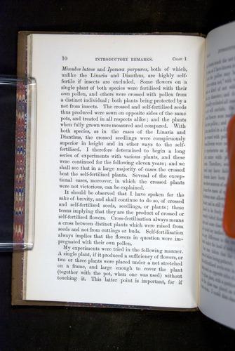 Image of Darwin-F1249-1876-010
