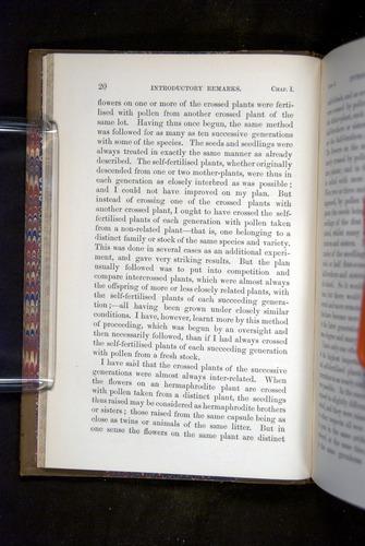 Image of Darwin-F1249-1876-020