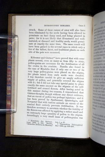 Image of Darwin-F1249-1876-024