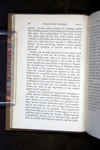 Image of Darwin-F1249-1876-026
