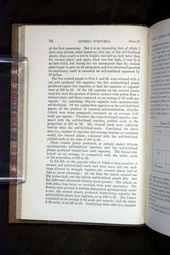 Image of Darwin-F1249-1876-030