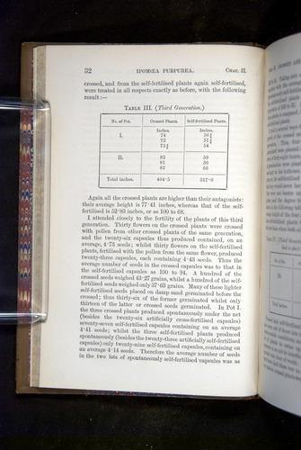 Image of Darwin-F1249-1876-032