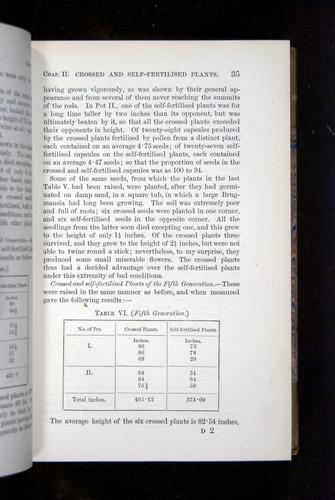 Image of Darwin-F1249-1876-035