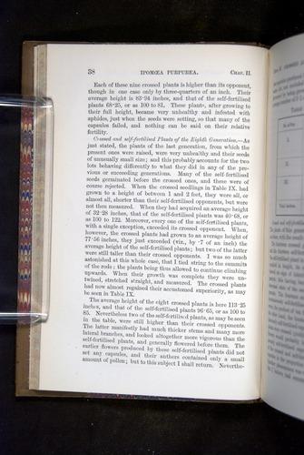 Image of Darwin-F1249-1876-038
