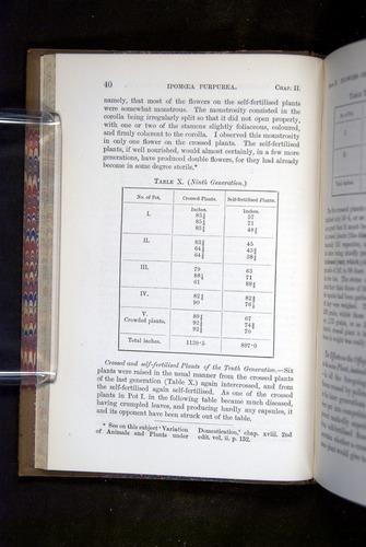 Image of Darwin-F1249-1876-040